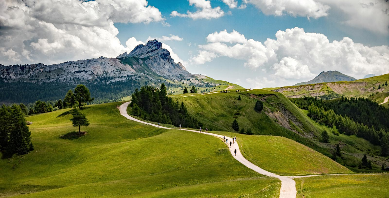 The mountains of the Alta Badia in different shades of green